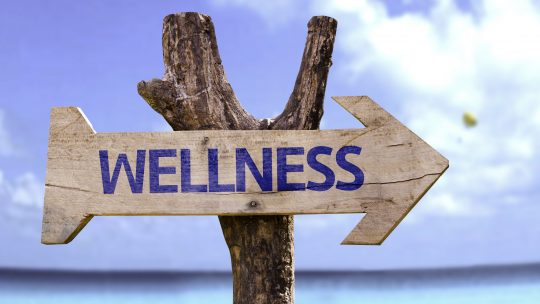 Quel rôle pour le Chief Wellness Officer ?